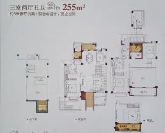 中海御山府叠加别墅5室2厅5卫258平米2016年产权房毛坯