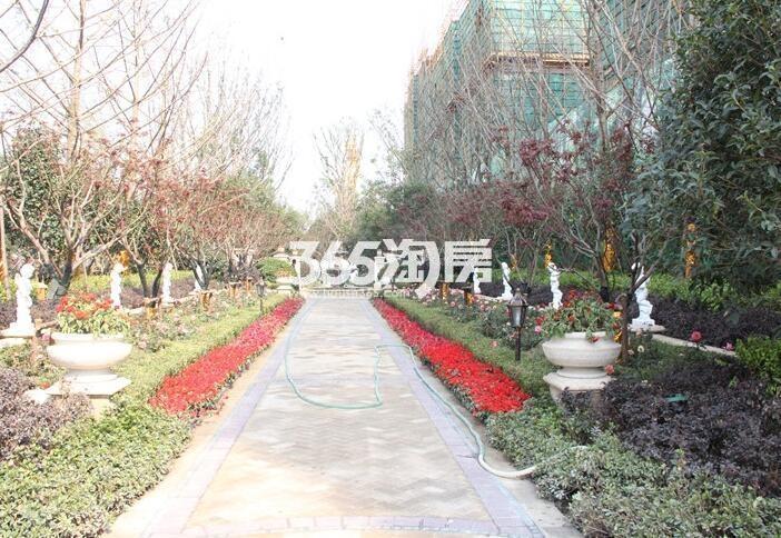弘阳上院实景图(4.21)