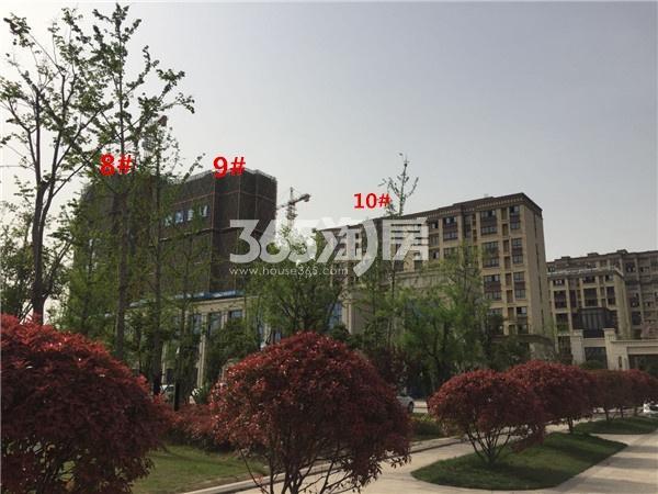 港利上城国际西侧在建的8#9#(4.18)