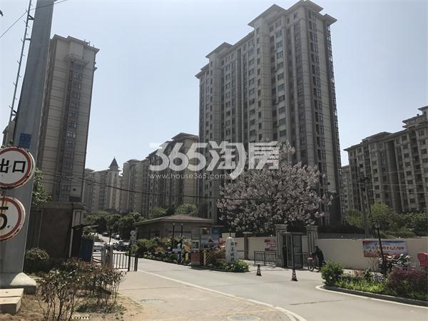 国基逸境小区内部道路实景图(4.18)
