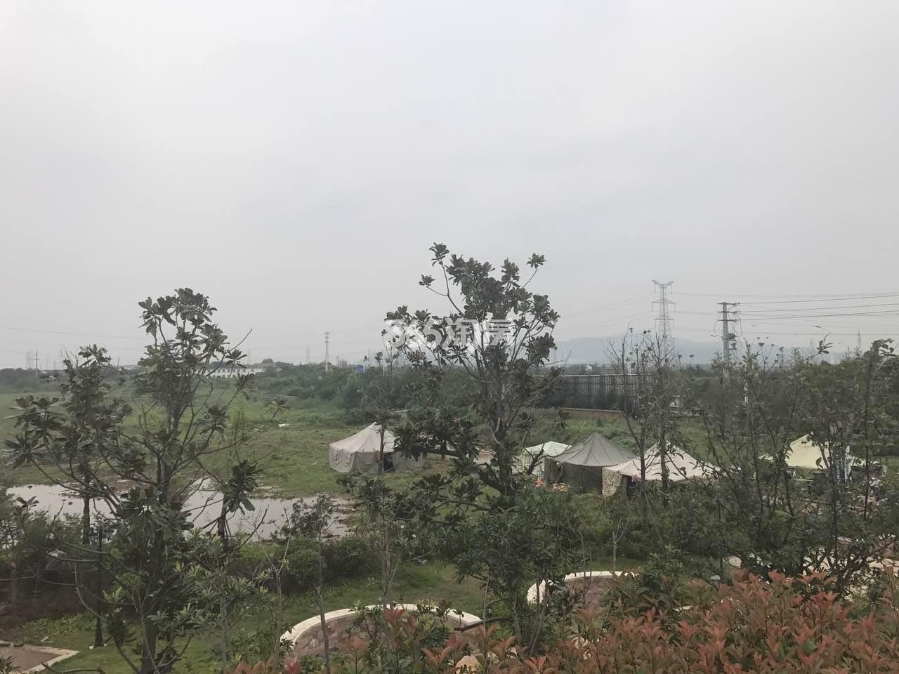 正源尚峰尚水内部绿化实景图(10.20)