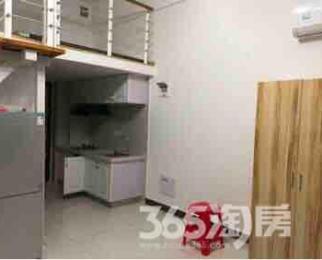 合肥中环CBD公寓1室1厅1卫41平米整租豪华装