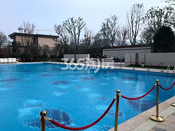 新力帝泊湾售楼处室外泳池实景(2017.11摄)