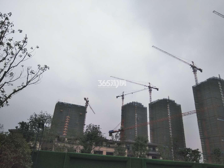 新城香悦公馆一期高层实景图 2017年10月摄