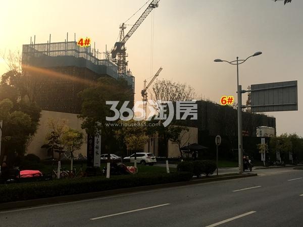 万科北门塘上4#、6#楼工程进度实景(2017.11摄)