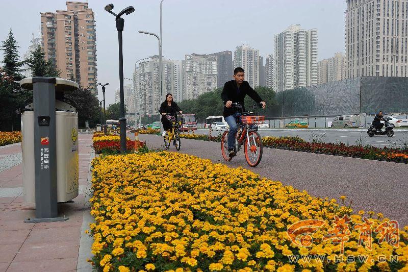 """科技路现彩色自行车道 居民:""""幸福指数上升"""""""