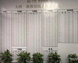 大树-湘湘恬园3室2厅1卫86平方产权房精装