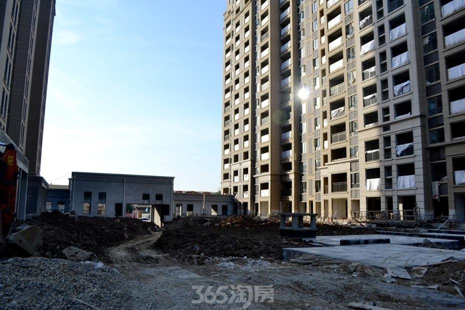 信达蓝湖郡工程进度(2017.1摄)