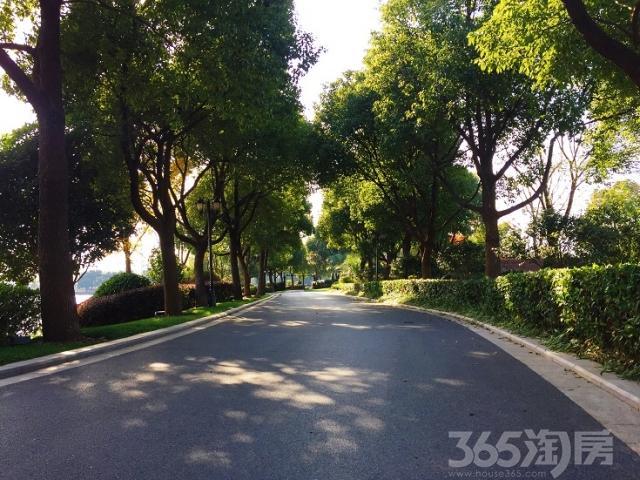 距上海虹桥30公里,淀山湖一线湖景精装别墅,最后珍藏4席