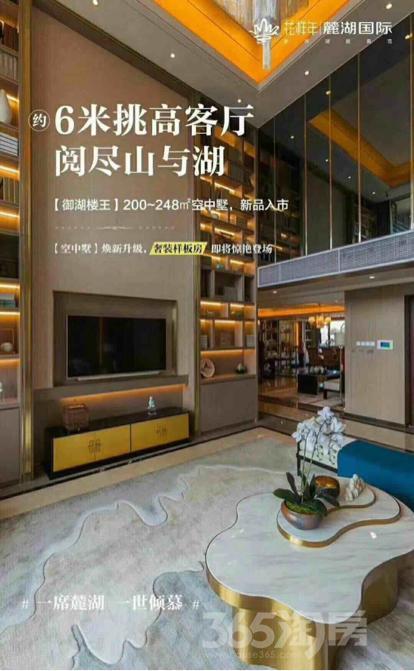 麓湖国际6室3厅4卫243平米毛坯产权房2018年建