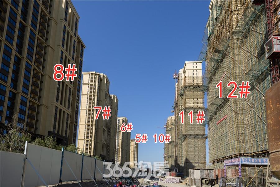 信德悦城5#、6#、7#、8#、10#、11#、12#工程进度(2019.11摄)