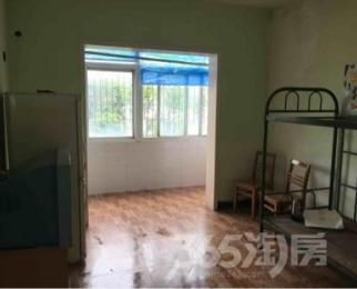 照山社区3室1厅1卫80平米整租精装