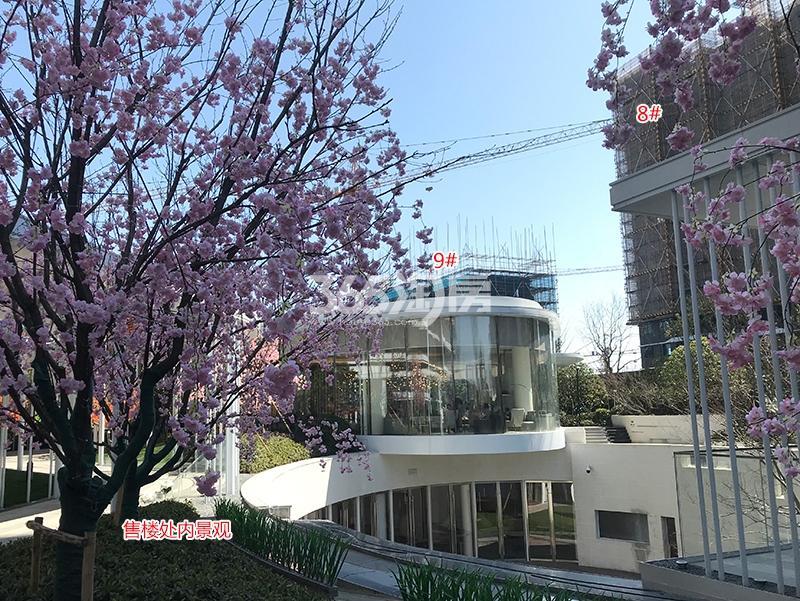 阳光城未来悦项目8、9号楼实景图(2018.3)