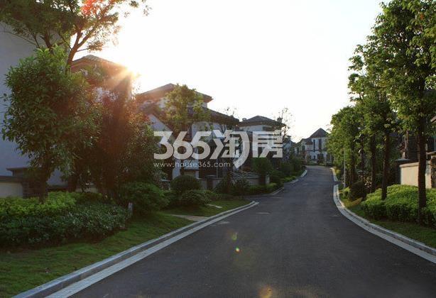 美好紫蓬山壹号别墅环境实景图(2017.12.4)