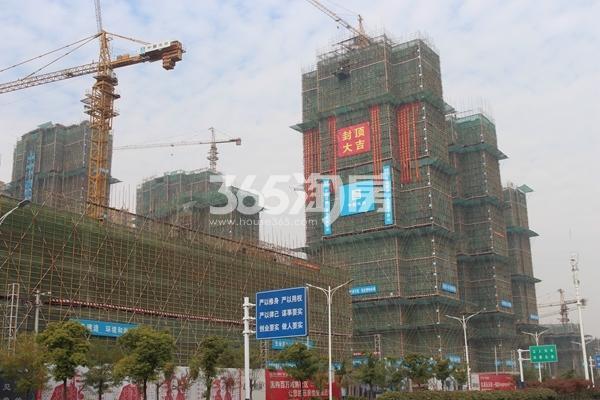 蚌埠国购广场 三期大观2#封顶大吉 201712