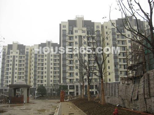 12月工程进展:已经交付的小高层7#、6#、10#、19#楼