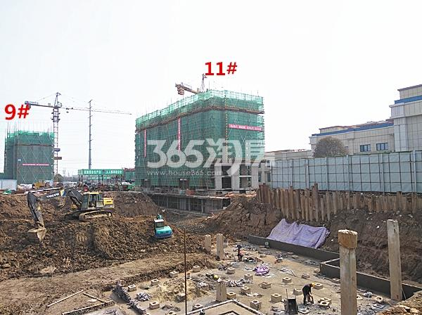 珍宝岛熙悦府在建9、11#楼实景图(3.14)