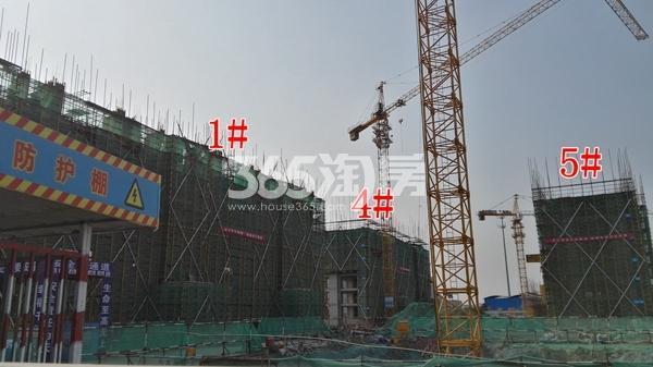 中海熙岸华府1、4、5#洋房在建实景(12.5)