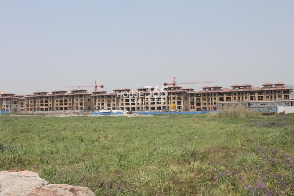 高科荣境南面中间段联排别墅实景图(5.2)