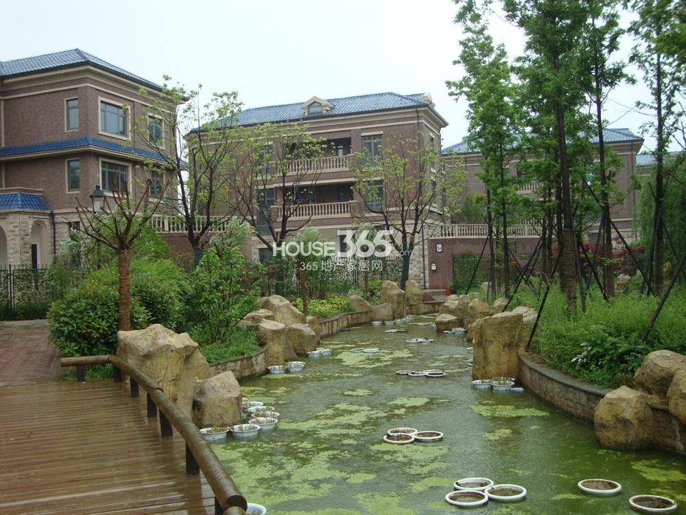 中豪天禄景观实景图(5.15)