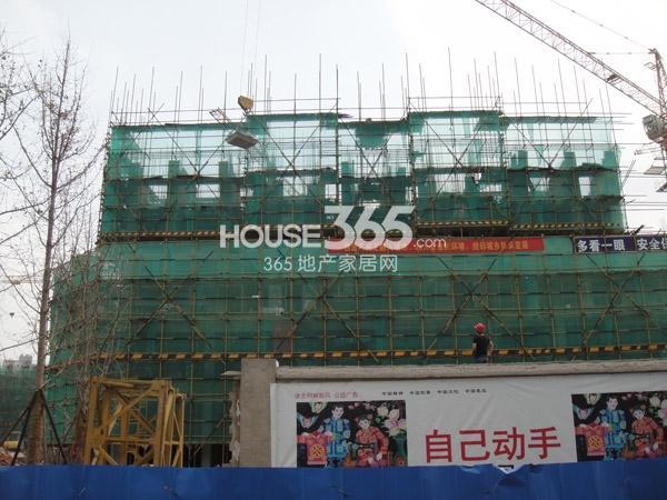工程进度实景图(2013.8.24)