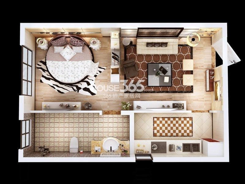 朱雀云天公寓C户型 一室一厅一厨一卫约45.38㎡