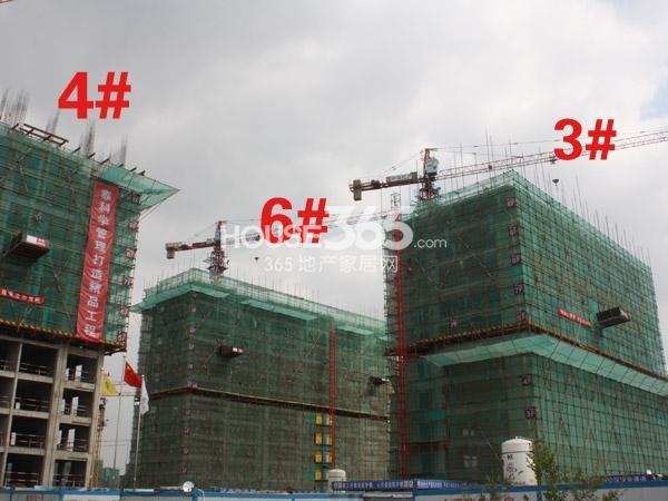 中海凤凰熙岸3、4、6#楼工程实景图(2013.10.25)