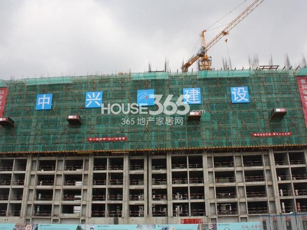 中海凤凰熙岸4#楼工程实景图(2013.10.25)