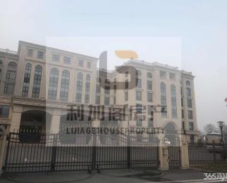 九龙湖产业园招商总部基地诚基大厦亚都大厦中惠大厦