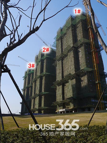 万科森林公园2月工程进度(2014.2.8)