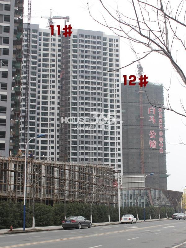 绿洲白马公馆11#、12#工程实景图(2014.3.6)