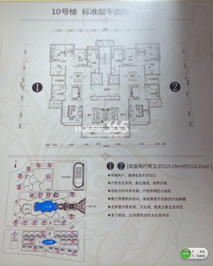 10号楼平面图