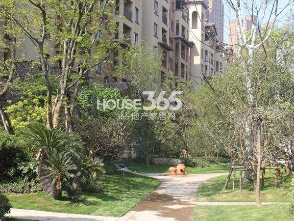 龙湖龙誉城[花千树]景观实景图