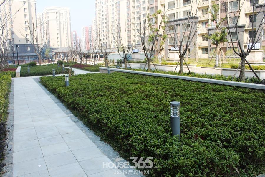 三潭音悦小区内绿化(2014年6月摄)