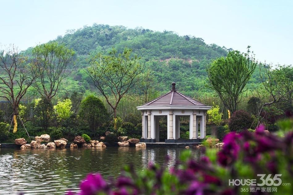 银亿东城售楼旁景观实景图(7.20)
