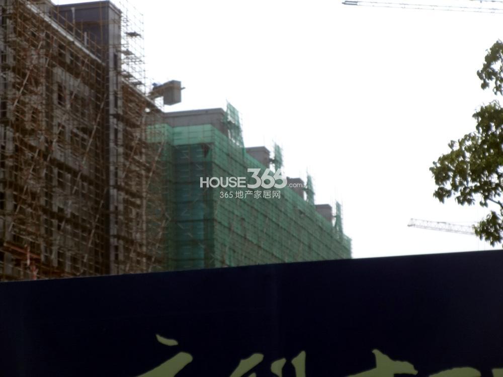 高科荣境25、24号楼现状实景图(8.20)