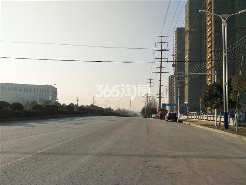 珍宝岛熙悦府项目周边公路实景图(1.24)