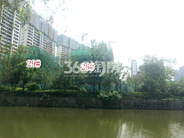 蓝光雍锦园洋房26#、29#楼实景图(2018.6 摄)