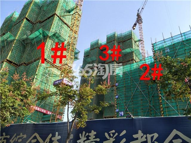 珍宝岛熙悦府1、2、3#楼实景图(9.25)
