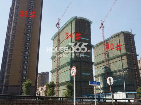 九洲花园缇香郡30、34、38#工程实景图(2014.10)