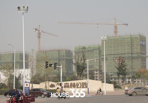 万科森林公园10月工程进度(2014.10.29)
