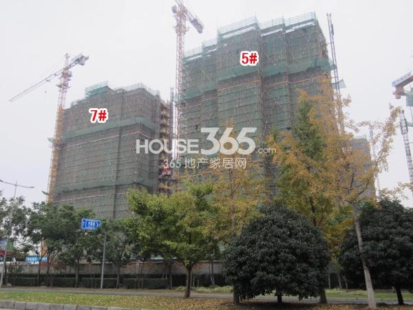 苏宁悦城二期5、7#楼工程实景图(2014.10 摄)