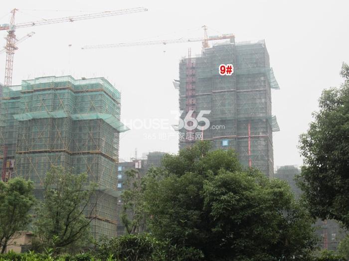朗诗太湖绿郡9#楼实景图(2014.10 摄)