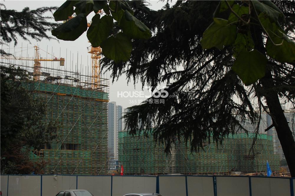 嘉里置业地块楼栋已经动工(11.19)