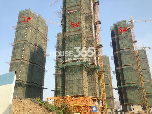 常州宝龙城市广场1#、5#、6#工程进度(2014.11)