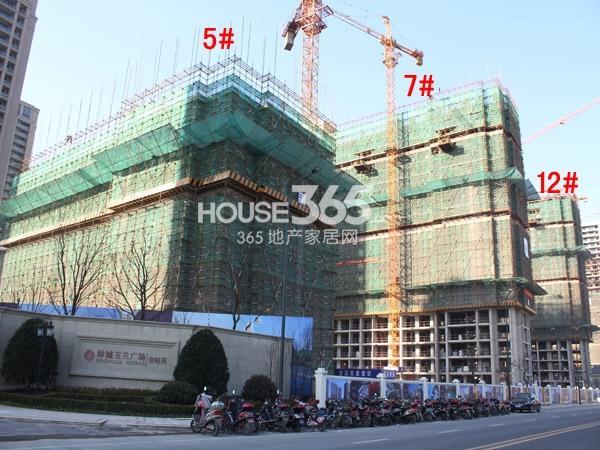 绿城玉兰广场5#、7#、12#楼工程进度图(2014.12)