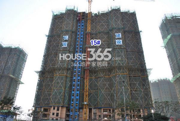 雅居乐中心广场15#楼实景图(2014.12 摄)