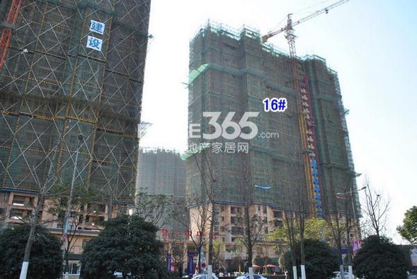 雅居乐中心广场16#楼实景图(2014.12 摄)