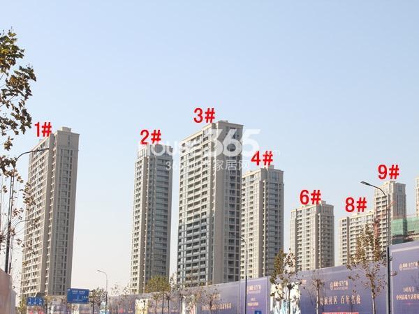 绿城玉兰广场1-4#、6#、8#、9#楼全景图(2014.12)