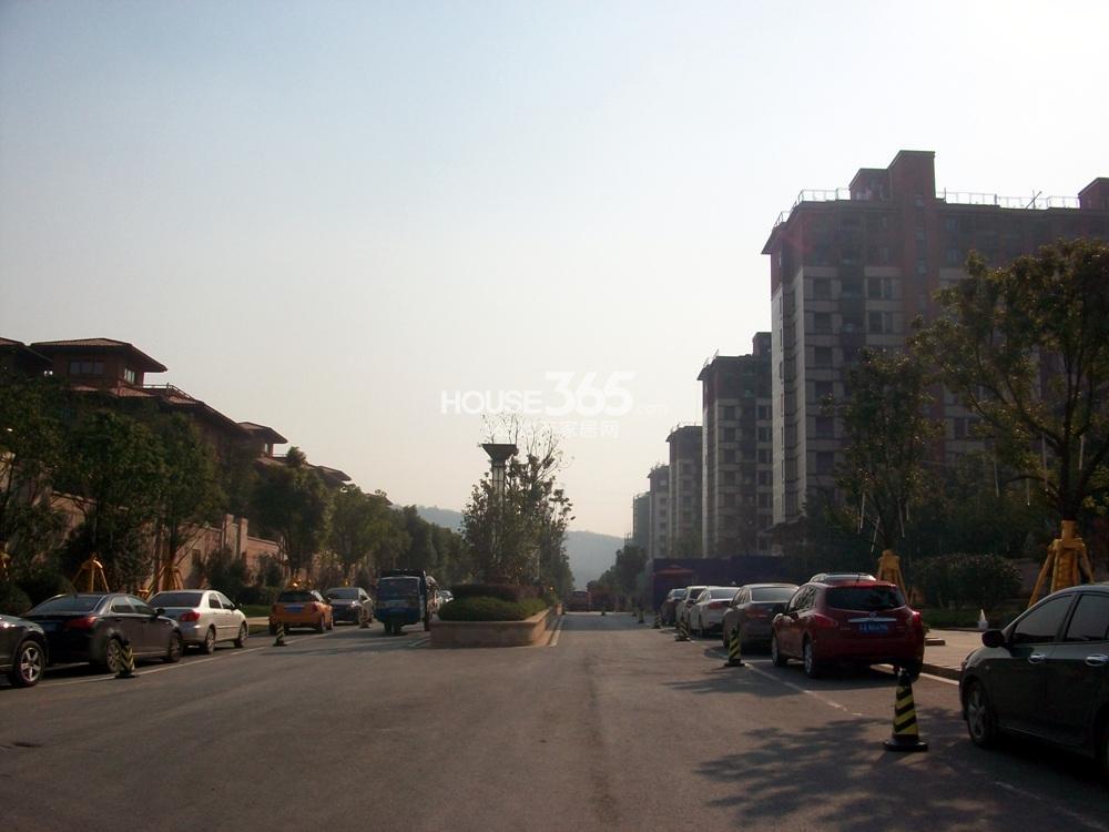 高科荣境二期小高层和一期别墅中间道路(12.5)